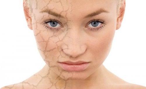 Trucos de maquillaje para piel seca