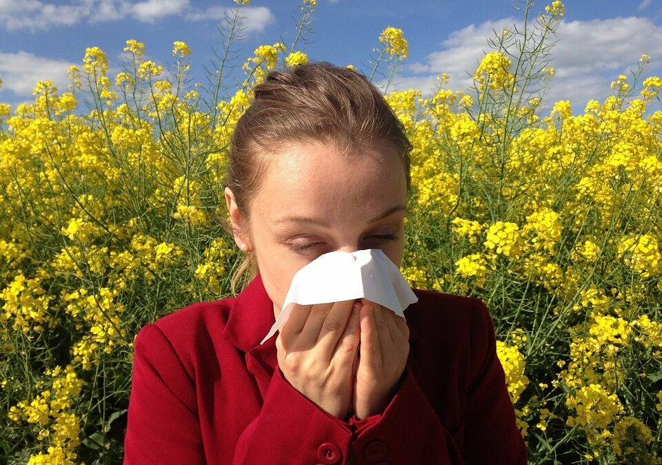 Trucos para sobrevivir en época de alergias sin morir en el intento